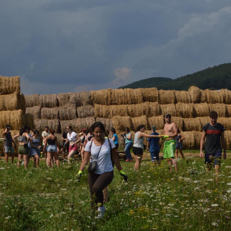 Volounteering in Transilvania
